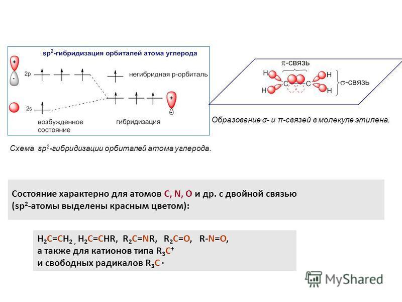 Схема sp 2 -гибридизации орбиталей атома углерода. Образование σ- и π-связей в молекуле этилрена. Состояние характерно для атомов С, N, O и др. с двойной связью (sp 2 -атомы выделрены красным цветом): H 2 C=CH 2, H 2 C=CHR, R 2 C=NR, R 2 C=O, R-N=O,