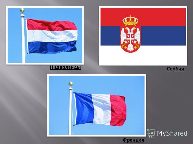 Нидерланды Сербия Франция