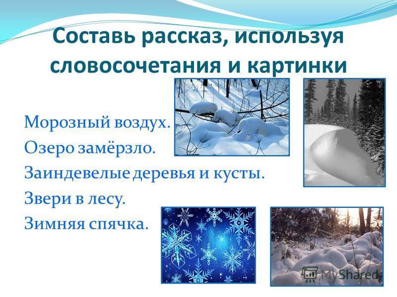 Составь рассказ, используя словосочетания и картинки Морозный воздух. Озеро замёрзло. Заиндевелые деревья и кусты. Звери в лесу. Зимняя спячка.