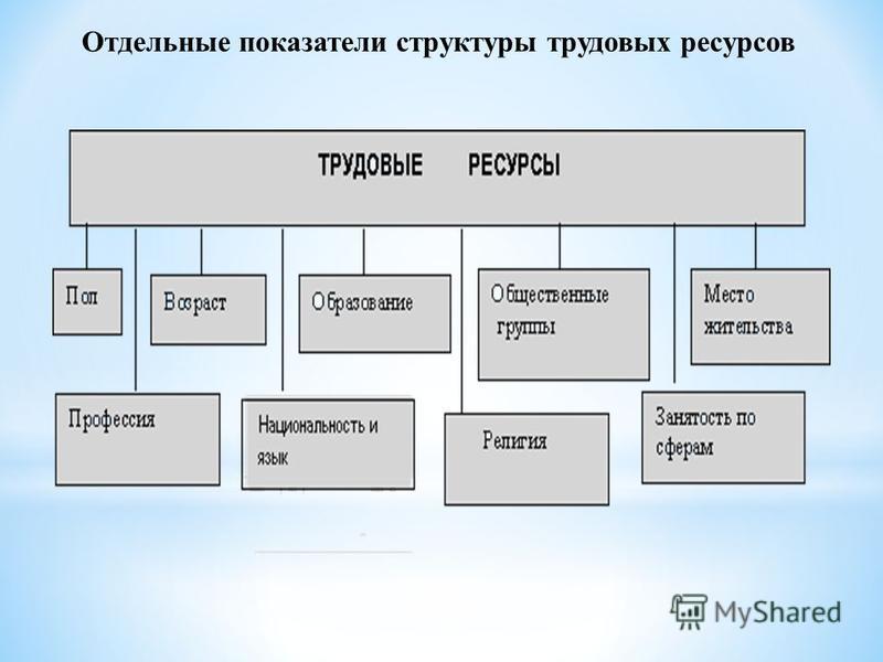 Отдельные показатели структуры трудовых ресурсов