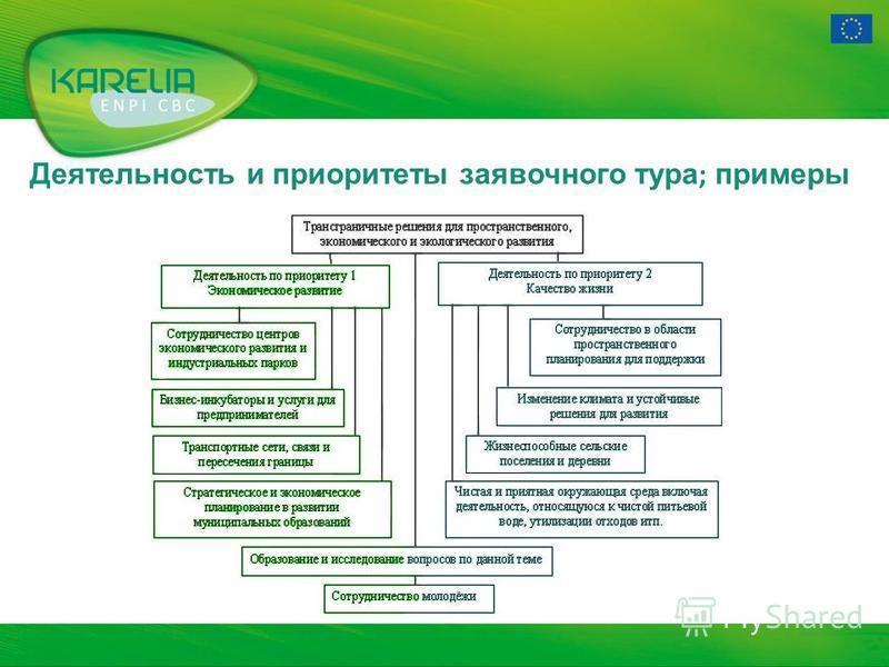 Деятельность и приоритеты заявочного тура ; примеры