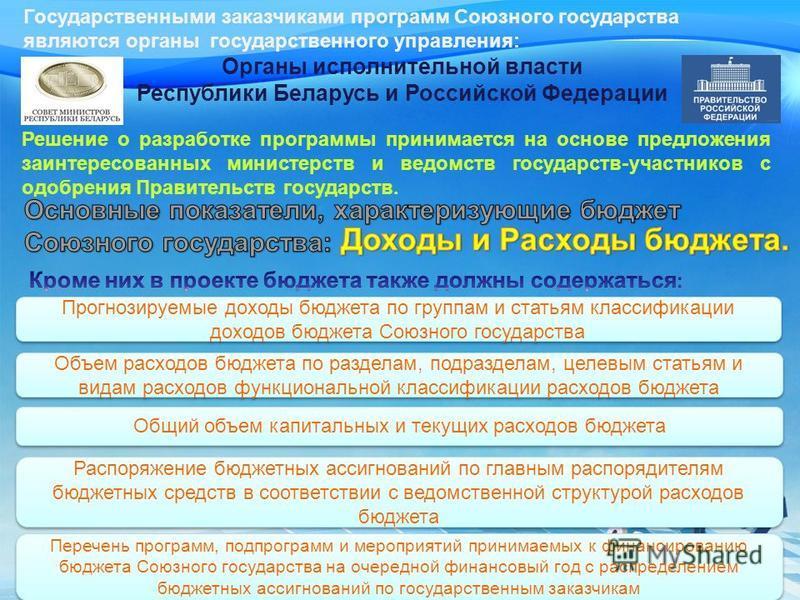 Государственными заказчиками программ Союзного государства являются органы государственного управления: Органы исполнительной власти Республики Беларусь и Российской Федерации Решение о разработке программы принимается на основе предложения заинтерес