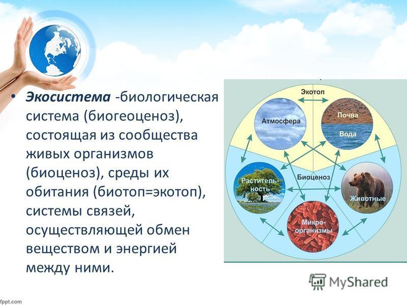 Экосистема -биологическая система (биогеоценоз), состоящая из сообщества живых организмов (биоценоз), среды их обитания (биотоп=экотоп), системы связей, осуществляющей обмен веществом и энергией между ними.