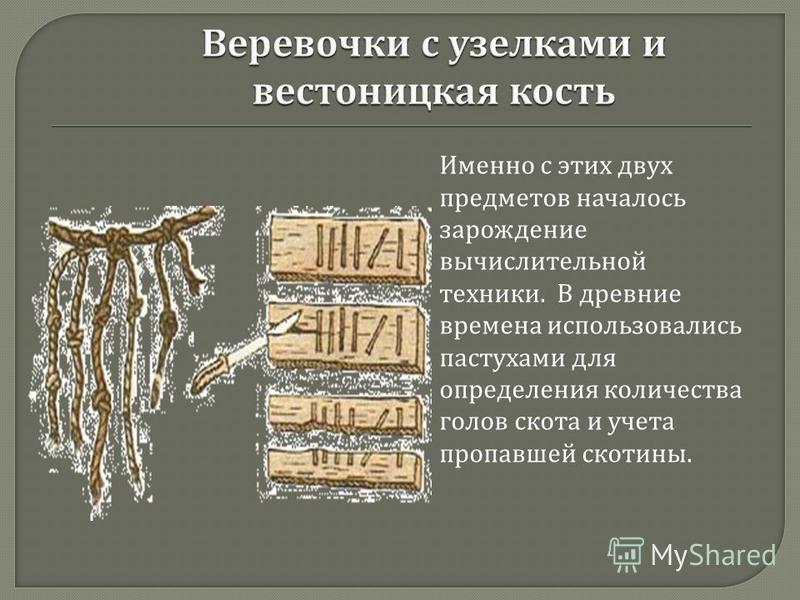 Именно с этих двух предметов началось зарождение вычислительной техники. В древние времена использовались пастухами для определения количества голов скота и учета пропавшей скотины.