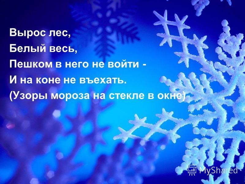 Вырос лес, Белый весь, Пешком в него не войти - И на коне не въехать. (Узоры мороза на стекле в окне)