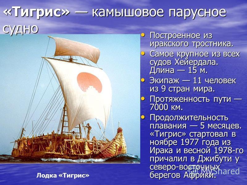 Лодка «Тигрис» «Тигрис» камышовое парусное судно Построенное из иракского тростника. Построенное из иракского тростника. Самое крупное из всех судов Хейердала. Длина 15 м. Самое крупное из всех судов Хейердала. Длина 15 м. Экипаж 11 человек из 9 стра