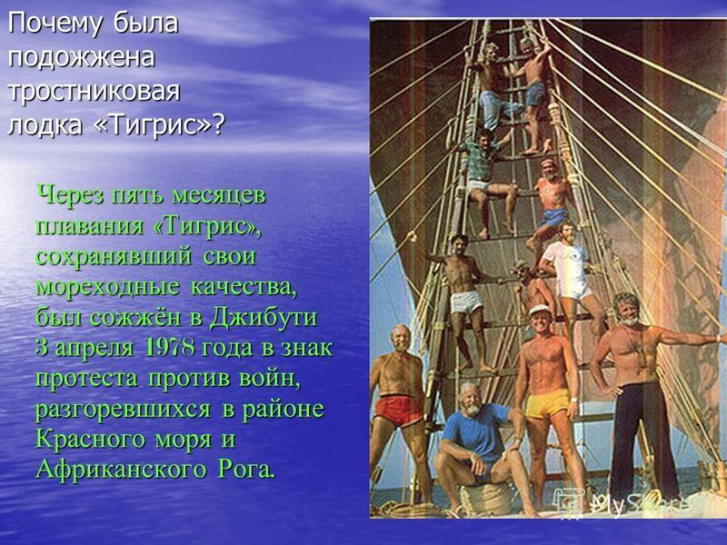 Через пять месяцев плавания « Тигрис », сохранявший свои мореходные качества, был сожжён в Джибути 3 апреля 1978 года в знак протеста против войн, разгоревшихся в районе Красного моря и Африканского Рога. Через пять месяцев плавания « Тигрис », сохра
