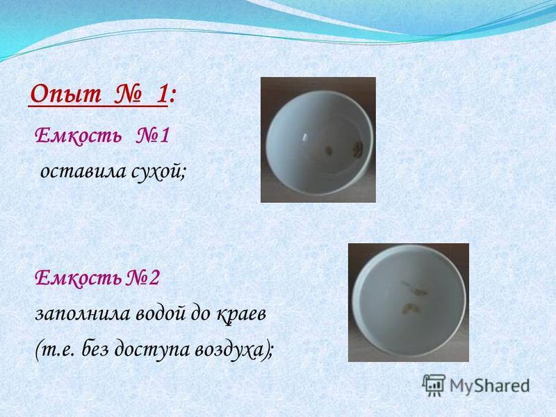 Опыт 1: Емкость 1 оставила сухой; Емкость 2 заполнила водой до краев (т.е. без доступа воздуха);