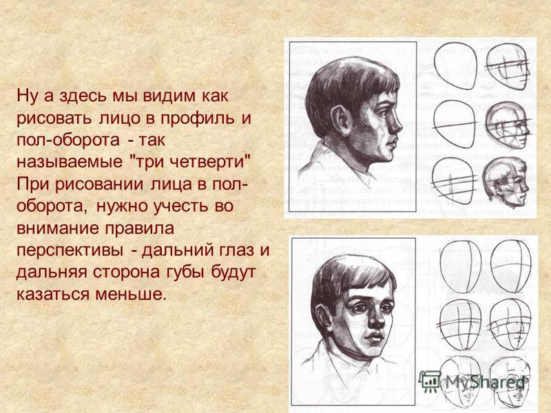 Ну а здесь мы видим как рисовать лицо в профиль и пол-оборота - так называемые три четверти При рисовании лица в пол- оборота, нужно учесть во внимание правила перспективы - дальний глаз и дальняя сторона губы будут казаться меньше.