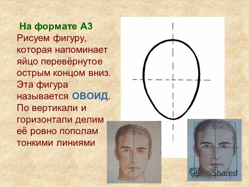 На формате А3 Рисуем фигуру, которая напоминает яйцо перевёрнутое острым концом вниз. Эта фигура называется ОВОИД. По вертикали и горизонтали делим её ровно пополам тонкими линиями