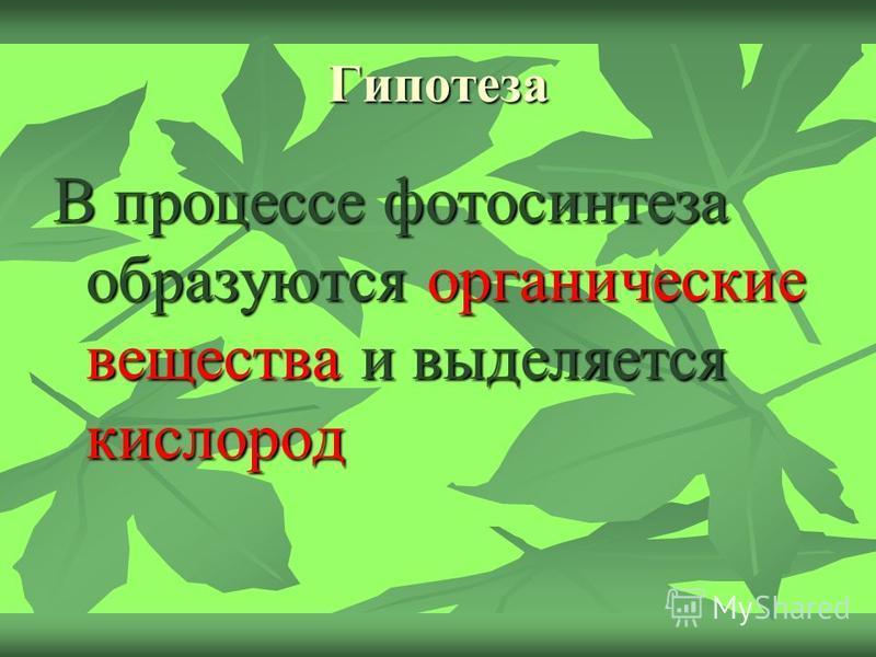 Гипотеза В процессе фотосинтеза образуются органические вещества и выделяется кислород
