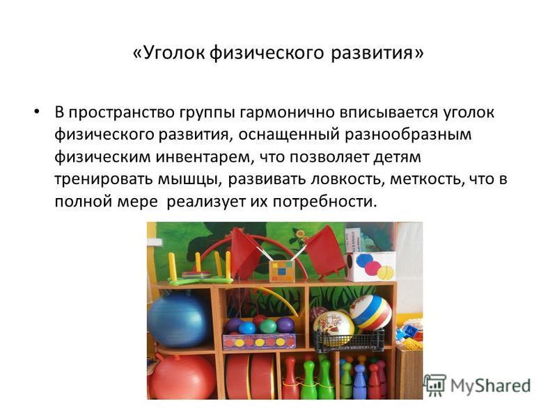 «Уголок физического развития» В пространство группы гармонично вписывается уголок физического развития, оснащенный разнообразным физическим инвентарем, что позволяет детям тренировать мышцы, развивать ловкость, меткость, что в полной мере реализует и