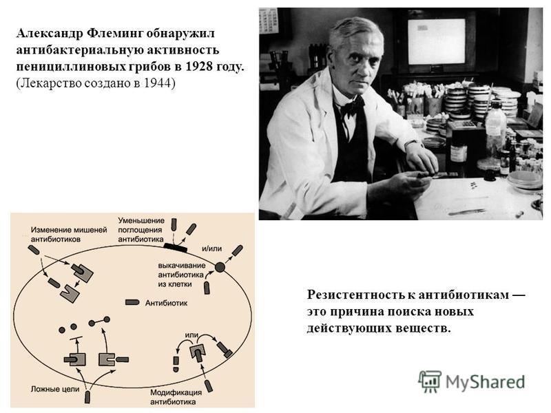 Александр Флеминг обнаружил антибактериальную активность пенициллиновых грибов в 1928 году. (Лекарство создано в 1944) Резистентность к антибиотикам это причина поиска новых действующих веществ.