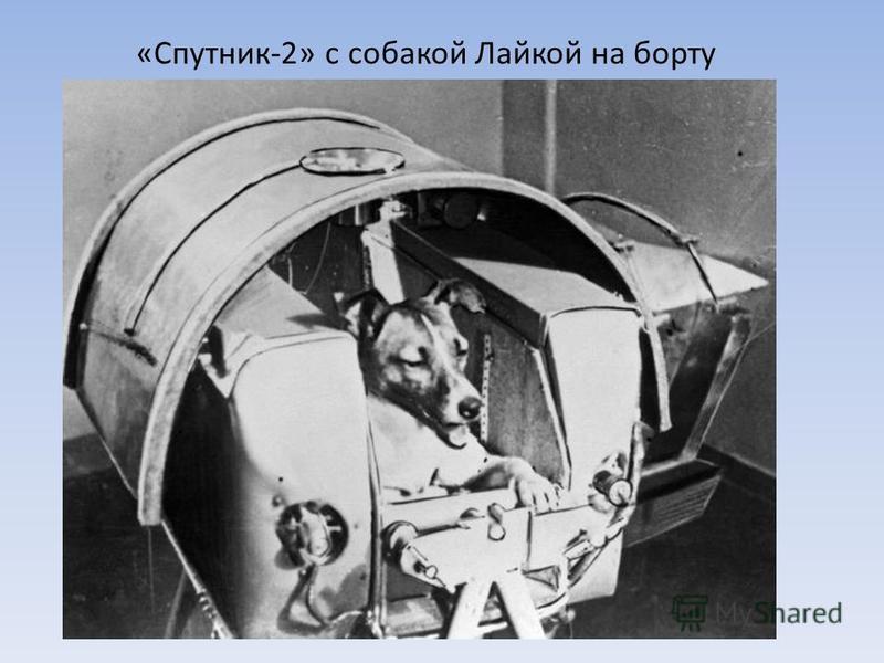 «Спутник-2» с собакой Лайкой на борту