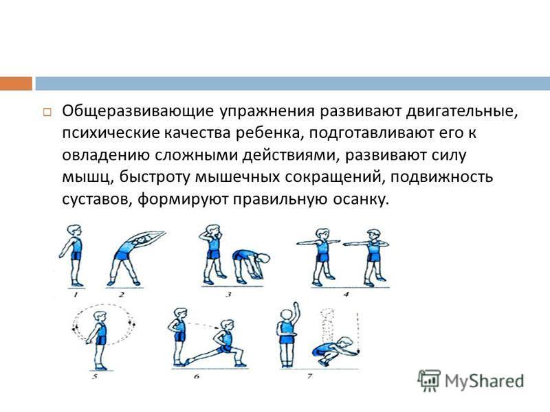 Общеразвивающие упражнения развивают двигательные, психические качества ребенка, подготавливают его к овладению сложными действиями, развивают силу мышц, быстроту мышечных сокращений, подвижность суставов, формируют правильную осанку.