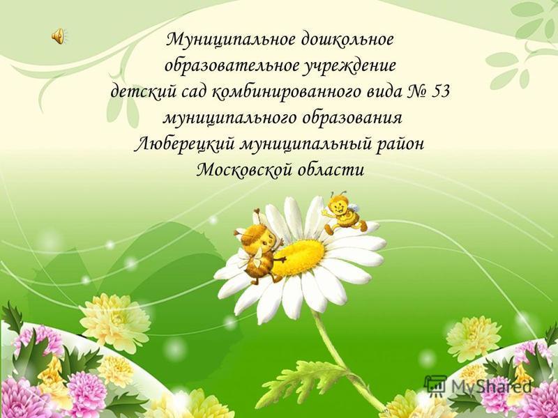 Муниципальное дошкольное образовательное учреждение детский сад комбинированного вида 53 муниципального образования Люберецкий муниципальный район Московской области