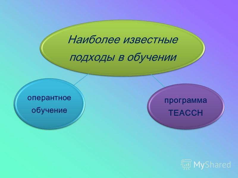 Наиболее известные подходы в обучении программа TEACCH оперантное обучение