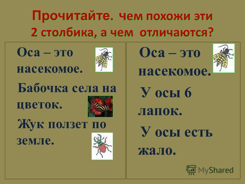 Прочитайте. ч ем похожи эти 2 столбика, а чем отличаются? Оса – это насекомое. Бабочка села на цветок. Жук ползет по земле. Оса – это насекомое. У осы 6 лапок. У осы есть жало.