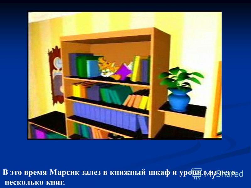 В это время Марсик залез в книжный шкаф и уронил из него несколько книг.