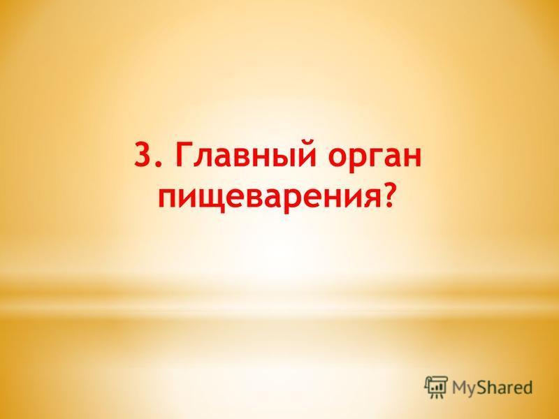 3. Главный орган пищеварения?