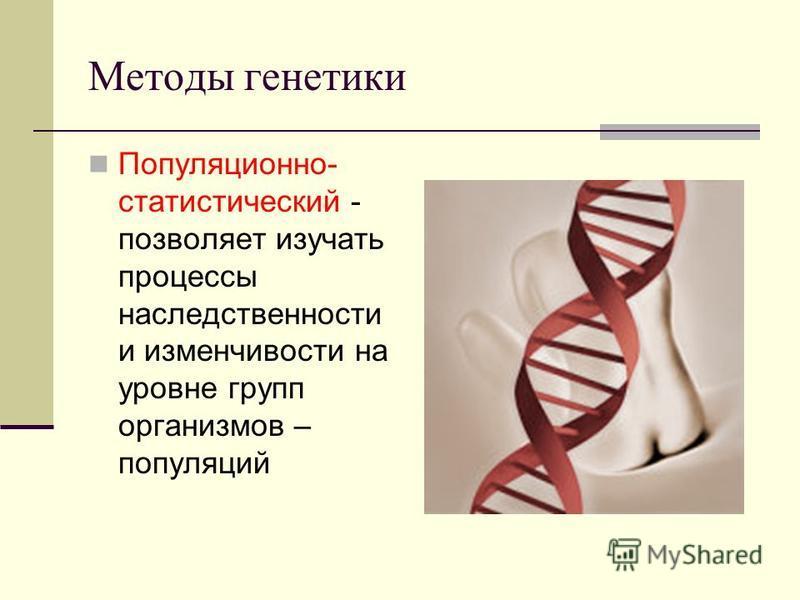 Методы генетики Популяционно- статистический - позволяет изучать процессы наследственности и изменчивости на уровне групп организмов – популяций