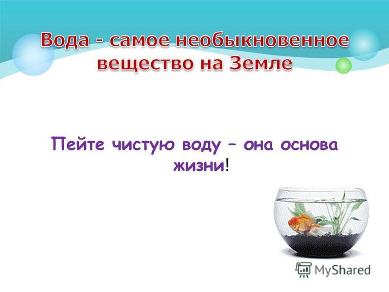 Пейте чистую воду – она основа жизни !