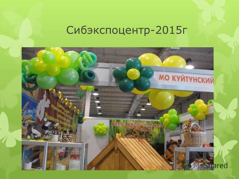 Сибэкспоцентр-2015 г