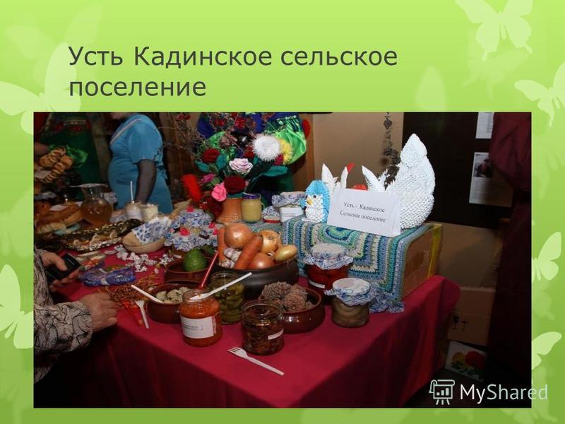 Усть Кадинское сельское поселение