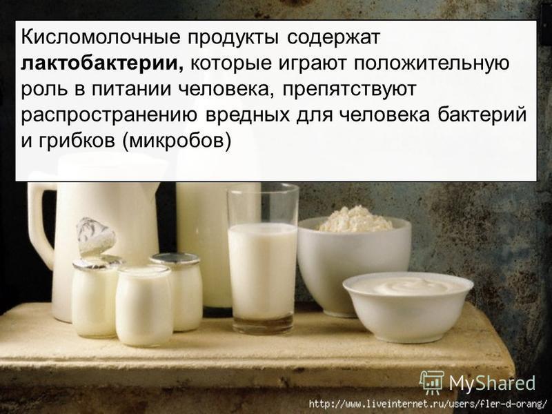 Кисломолочные продукты содержат лактобактерии, которые играют положительную роль в питании человека, препятствуют распространению вредных для человека бактерий и грибков (микробов)