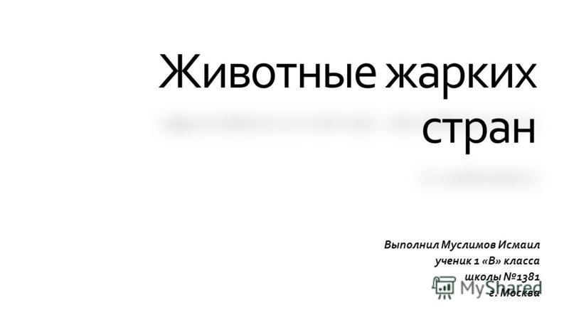 Животные жарких стран Выполнил Муслимов Исмаил ученик 1 «В» класса школы 1381 г. Москва