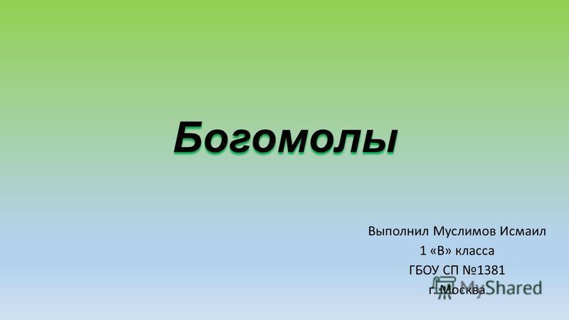 Богомолы Выполнил Муслимов Исмаил 1 «В» класса ГБОУ СП 1381 г. Москва