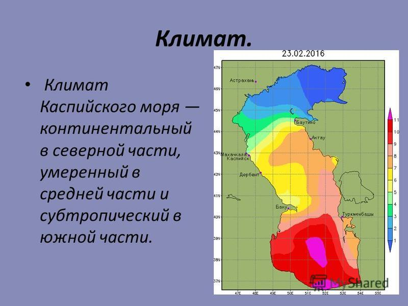 Климат. Климат Каспийского моря континентальный в северной части, умеренный в средней части и субтропический в южной части.