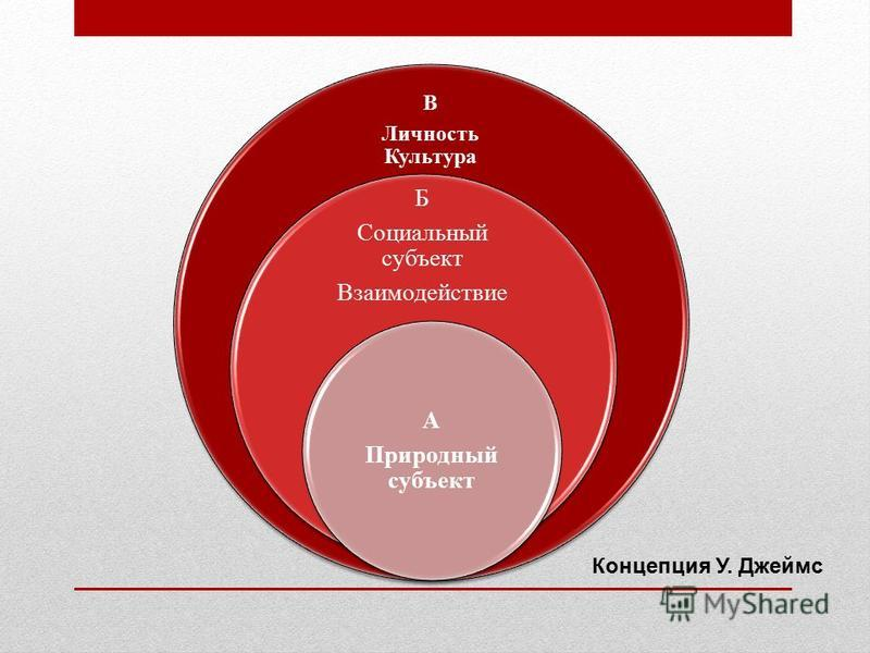 В Личность Культура Б Социальный субъект Взаимодействие А Природный субъект Концепция У. Джеймс