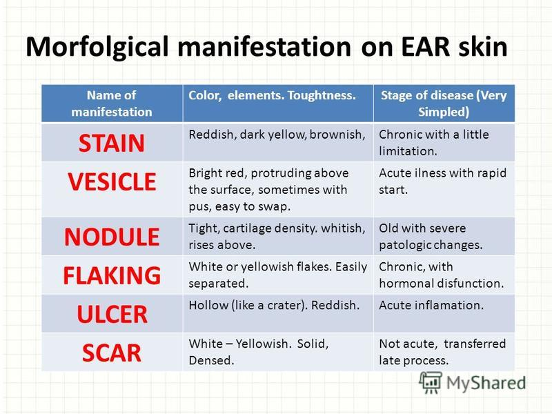 Morfolgical manifestation on EAR skin Name of manifestation Color, elements. Toughtness.Stage of disease (Very Simpled) STAIN Reddish, dark yellow, brownish,Chronic with a little limitation. VESICLE Bright red, protruding above the surface, sometimes