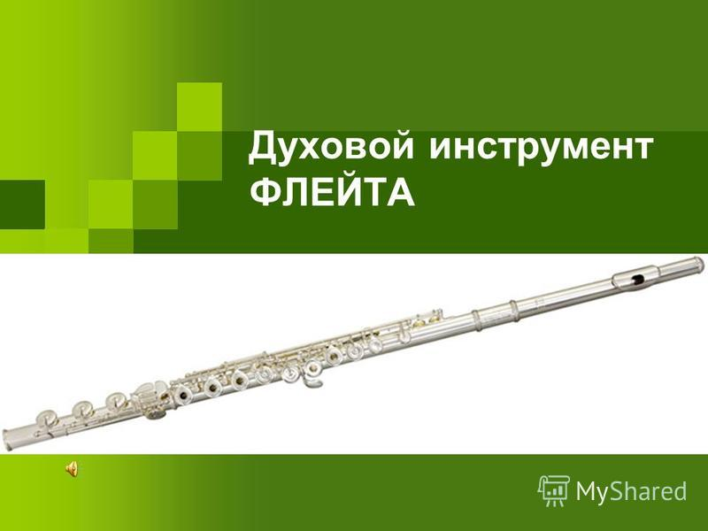 Духовой инструмент ФЛЕЙТА