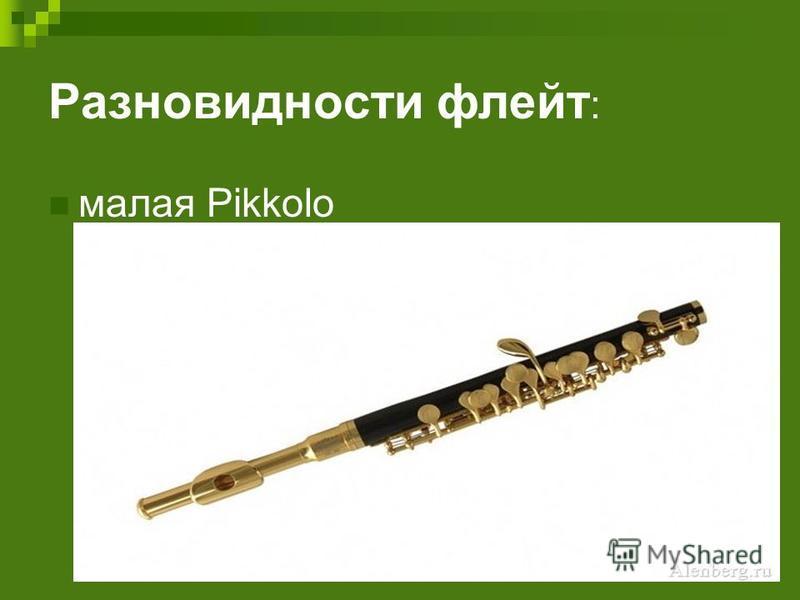 Разновидности флейт : малая Pikkolo