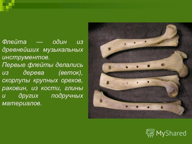Флейта один из древнейших музыкальных инструментов. Первые флейты делались из дерева (веток), скорлупы крупных орехов, раковин, из кости, глины и других подручных материалов.