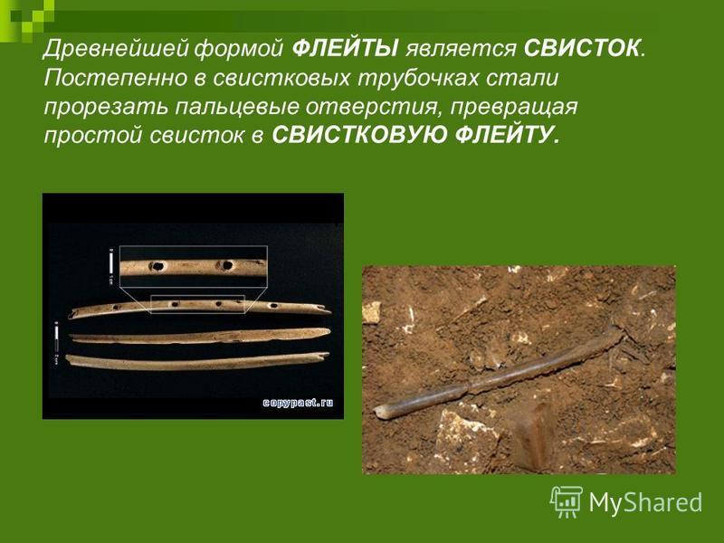Древнейшей формой ФЛЕЙТЫ является СВИСТОК. Постепенно в свистковых трубочках стали прорезать пальцевые отверстия, превращая простой свисток в СВИСТКОВУЮ ФЛЕЙТУ.