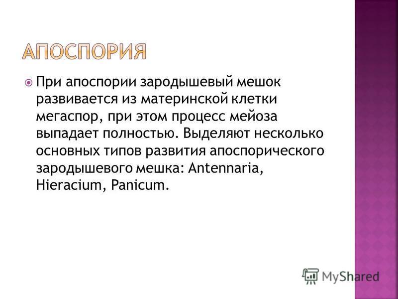 При апоспории зародышевый мешок развивается из материнской клетки мегаспор, при этом процесс мейоза выпадает полностью. Выделяют несколько основных типов развития апоспорического зародышевого мешка: Antennaria, Hieracium, Panicum.