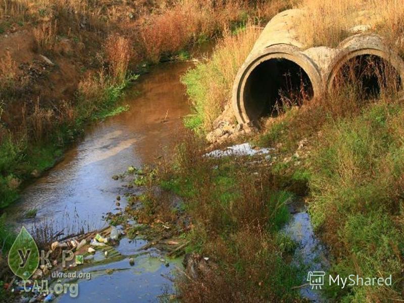 Ежегодно в мире от загрязнения воды заболевают около 500 млн. человек. Количество заболеваний растет, продолжительность человеческой жизни во многих странах сокращается.