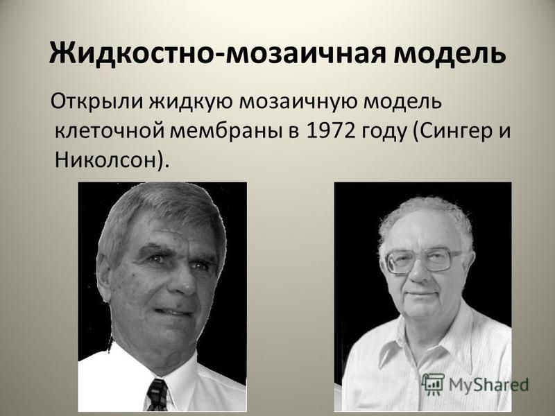Жидкостно-мозаичная модель Открыли жидкую мозаичную модель клеточной мембраны в 1972 году (Сингер и Николсон).