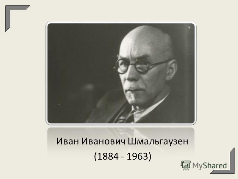 Иван Иванович Шмальгаузен (1884 - 1963)
