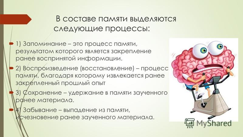 В составе памяти выделяются следующие процессы: 1) Запоминание – это процесс памяти, результатом которого является закрепление ранее воспринятой информации. 2) Воспроизведение (восстановление) – процесс памяти, благодаря которому извлекается ранее за