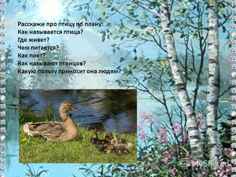 Расскажи про птицу по плану: Как называется птица? Где живет? Чем питается? Как поет? Как называют птенцов? Какую пользу приносит она людям?
