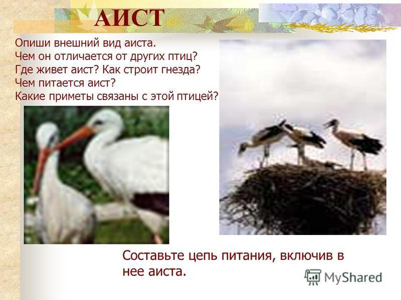 КОРШУН Опишите внешний вид коршуна. Расскажите, как он приспособился к условиям обитания. Составьте цепь питания, докажите ценность данной птицы для природы.