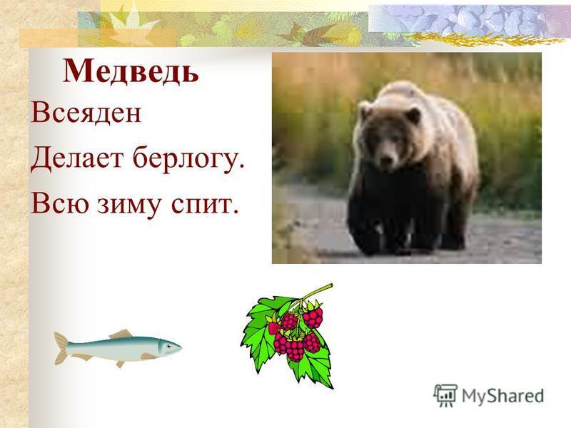 Добрый герой русских сказок, который любит мёд и малину. В Беларуси обитает ……… Медведь