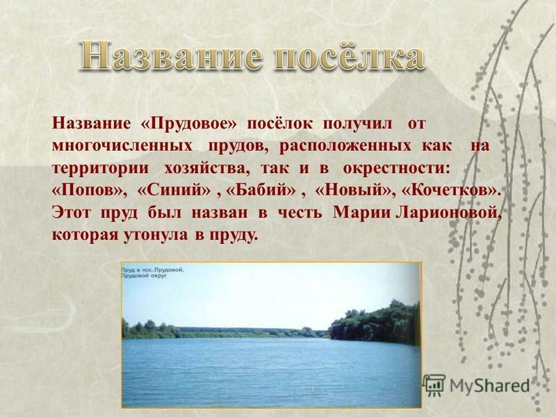 Название «Прудовое» посёлок получил от многочисленных прудов, расположенных как на территории хозяйства, так и в окрестности: «Попов», «Синий», «Бабий», «Новый», «Кочетков». Этот пруд был назван в честь Марии Ларионовой, которая утонула в пруду.