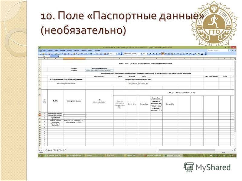 10. Поле «Паспортные данные» (необязательно)