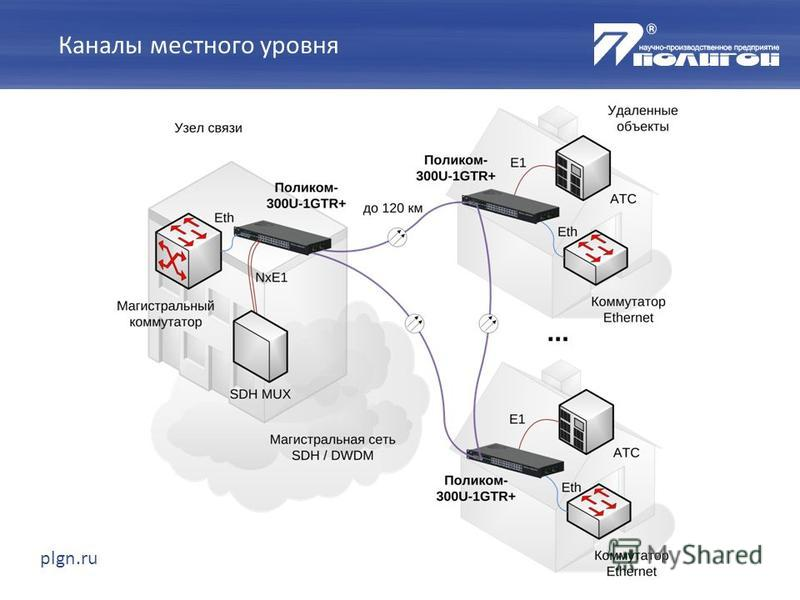 plgn.ru Каналы местного уровня