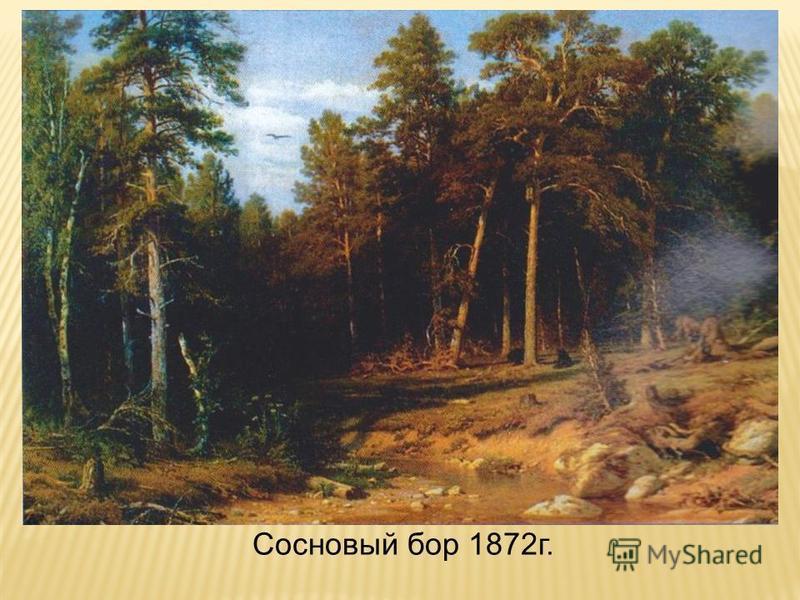 Сосновый бор 1872 г.